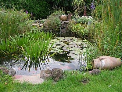 Hovenier assendelft hoveniers assendelft tuinaanleg for Tuinontwerp natuurlijke tuin